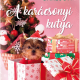 A karácsonyi kutya - Melody Carlson