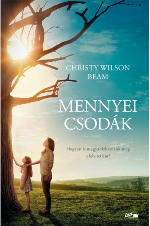 Mennyei csodák - Christy Wilson Beam