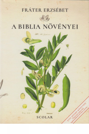 A Biblia növényei - Fráter Erzsébet